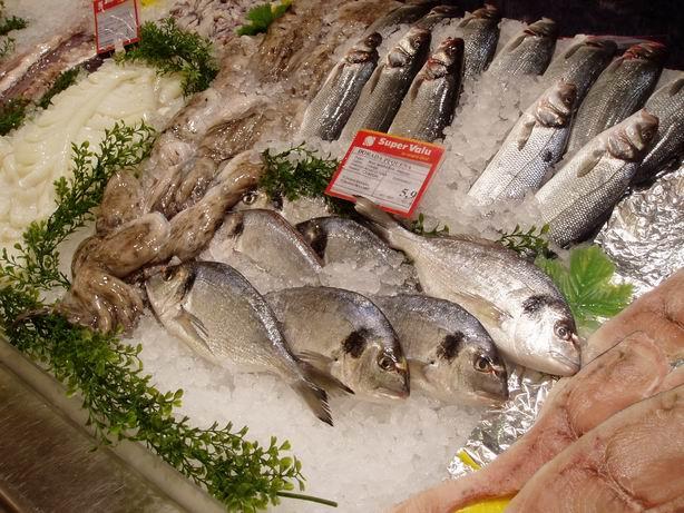 Espanjalaisia kaloja